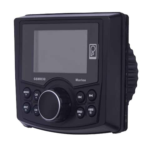 Poly-Planar Gsmr30 Mp4 Mp3 Photo Playback Gauge