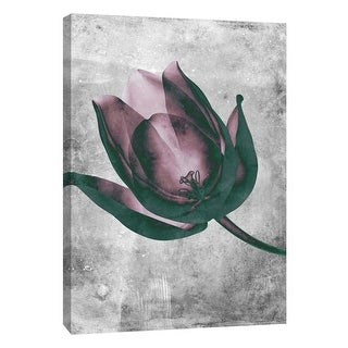 "PTM Images 9-105786  PTM Canvas Collection 10"" x 8"" - ""Flower Inversions 8"" Giclee Flowers Art Print on Canvas"