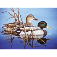 "Paint By Number Kit 15.375""X11.25""-Blue Water Mallards - Blue"