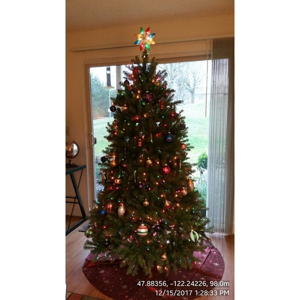 shop 65 foot dunhill fir pre lit or unlit artificial hinged christmas tree free shipping today overstockcom 9413337