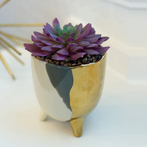 "Succulent in 5"" 3-TONE FOOTED CERAMIC,GREY - ONE-SIZE"