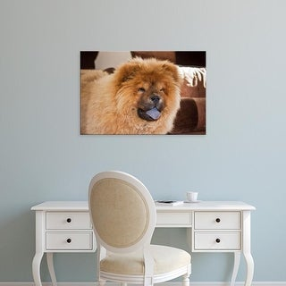 Easy Art Prints Zandria Muench Beraldo's 'A Chow Chow Puppy Standing Indoors' Premium Canvas Art