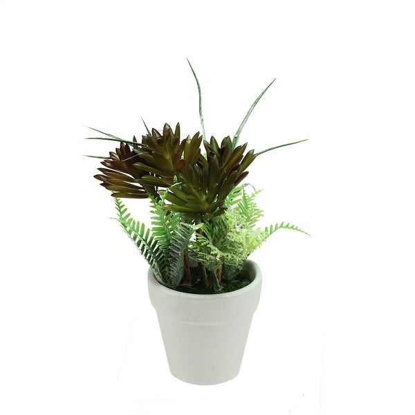 """7.5"""" Artificial Green and Red Succulent and Fern Spring Decoration in a Round White Pot"""