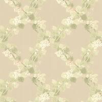 Brewster 344-68756 Delphia Beige Jasmine Trellis Wallpaper - N/A