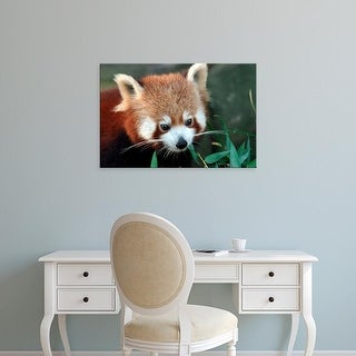 Easy Art Prints David Wall's 'Stingray' Premium Canvas Art