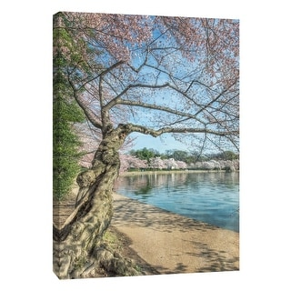 "PTM Images 9-105984  PTM Canvas Collection 10"" x 8"" - ""Cherry Blossoms 6"" Giclee Forests Art Print on Canvas"