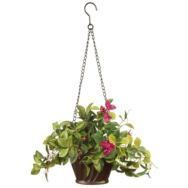 "Boston Christmas Tree Delivery: Shop 10"" Assorted Greens Hanging Basket"