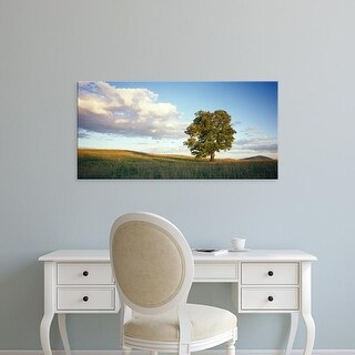 Easy Art Prints Panoramic Images's 'Tree in a field, Vermont, USA' Premium Canvas Art