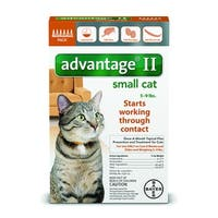 Advantage II for Cats 5 - 9lbs. 6 Pack