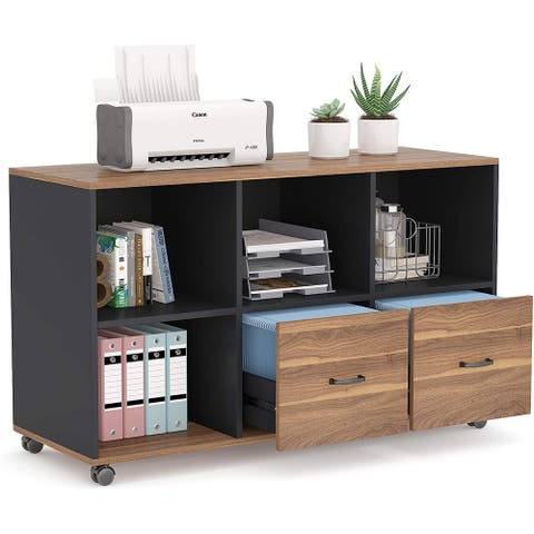 Lateral File Cabinets with 2 Drawers and Storage Shelves, Mobile Printer Stand Filling Cabinet for Home Office, Letter Size