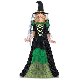 Womens Storybook Witch Dress Costume