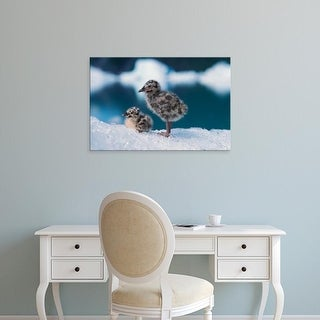 Easy Art Prints Steve Kazlowski's 'Muw Gull Chicks' Premium Canvas Art