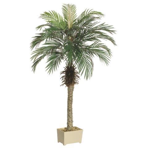 Set of 2 Potted Artificial Silk Phoenix Palm Trees 5' - Green - N/A