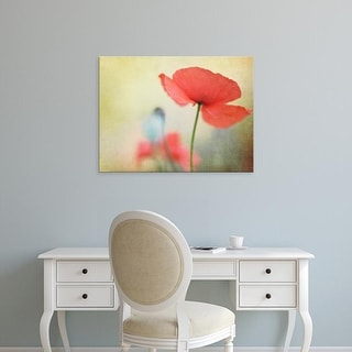 Easy Art Prints Kim Fearheiley's 'Poppy' Premium Canvas Art