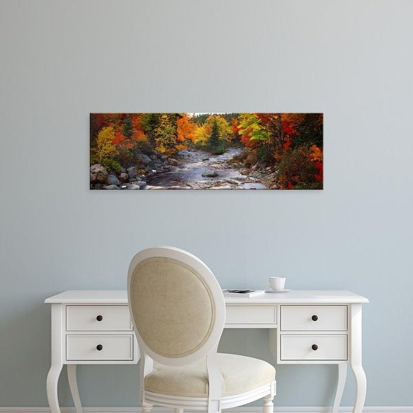 Easy Art Prints Panoramic Images's 'Stream with trees in a forest in autumn, Nova Scotia, Canada' Premium Canvas Art