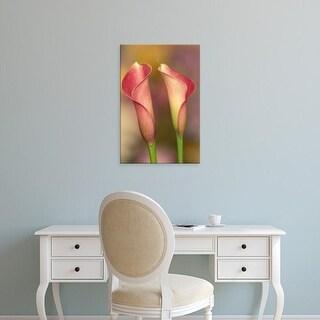 Easy Art Prints Adam Jones's 'Calla Lily' Premium Canvas Art