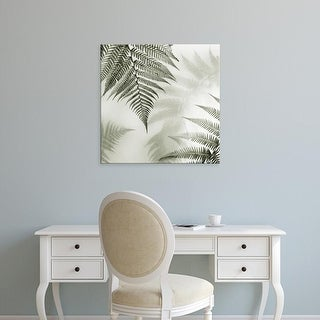 Easy Art Prints Alan Blaustein's 'Ferns No. 1' Premium Canvas Art