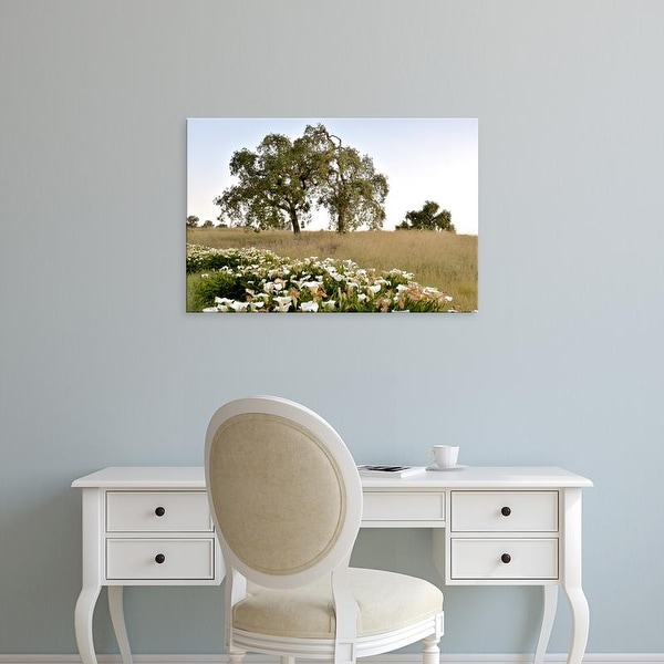 Easy Art Prints Alan Blaustein's 'Oak Tree #94' Premium Canvas Art