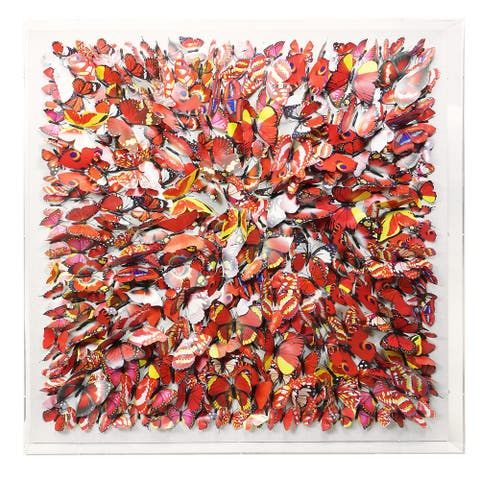 HUJI Butterfly Gathering Grand Shadow Box Wall Decor - N/A