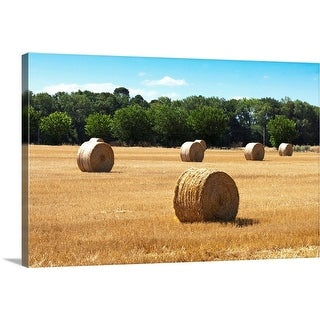 """Hay in the Field, France"" Canvas Wall Art"