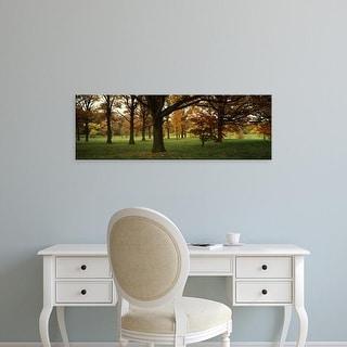 Easy Art Prints Panoramic Images's 'Trees in autumn' Premium Canvas Art