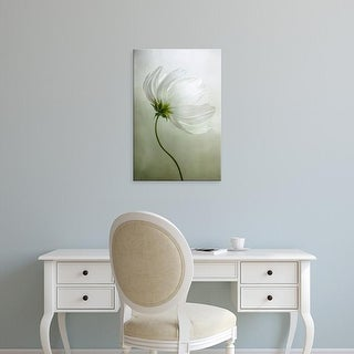Easy Art Prints Mandy Disher's 'Cosmos Charisma' Premium Canvas Art
