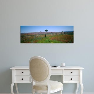 Easy Art Prints Panoramic Images's 'Wildflowers in a field, Texas, USA' Premium Canvas Art