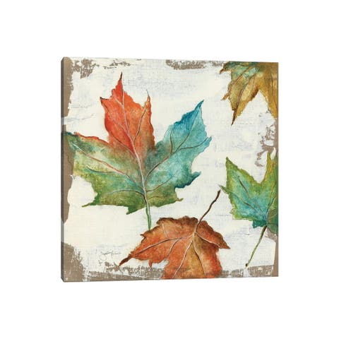 "iCanvas ""Fall Leaves"" by Tava Studios Canvas Print"