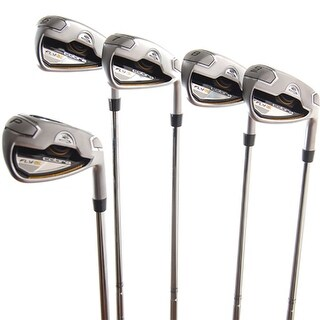 New Cobra Fly-Z Iron Set 6-PW DG Pro R300 R-Flex Steel RH