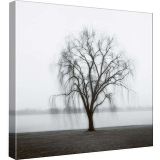 "PTM Images 9-97763  PTM Canvas Collection 12"" x 12"" - ""Willow on the Potomac"" Giclee Forests Art Print on Canvas"