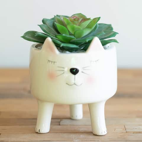 4in Cute Pink Boy Cat Ceramic Planter with Legs