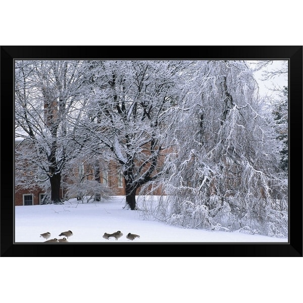 """New England, Trees and building during winter snow"" Black Framed Print"