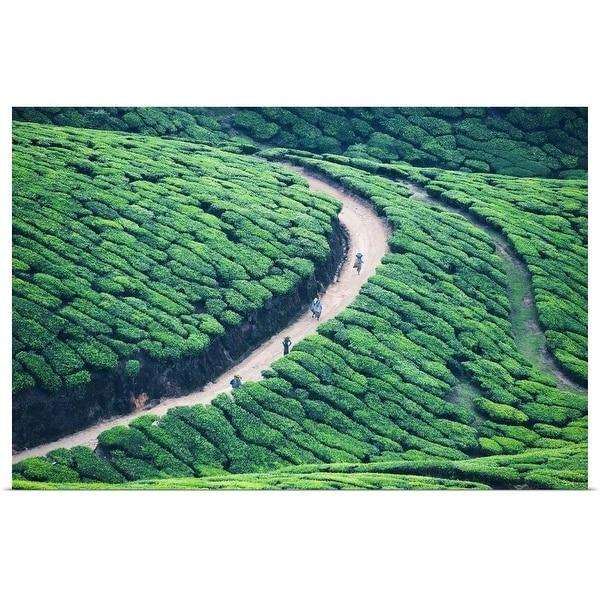 """""""Way home from tea plantation in Munnar, Kerala."""" Poster Print"""