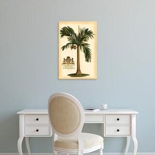 Easy Art Prints Vision Studio's 'British Colonial Palm I' Premium Canvas Art