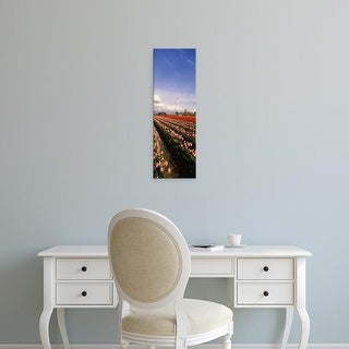 Easy Art Prints Panoramic Images's 'Tulips in a field, Skagit Valley, Washington State, USA' Premium Canvas Art