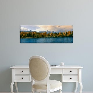 Easy Art Prints Panoramic Image 'Trees in a forest along Snake River, Grand Teton National Park, Wyoming' Canvas Art