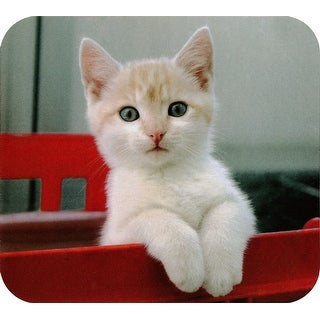 Deluxe Mouse Mat- White Kitten