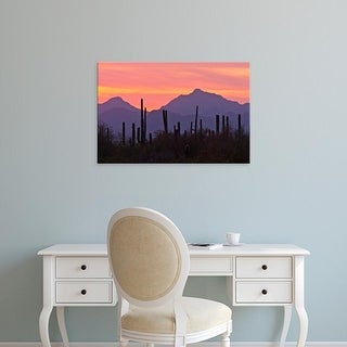 Easy Art Prints Jaynes Gallery's 'Saguaro Forest At Sunset' Premium Canvas Art