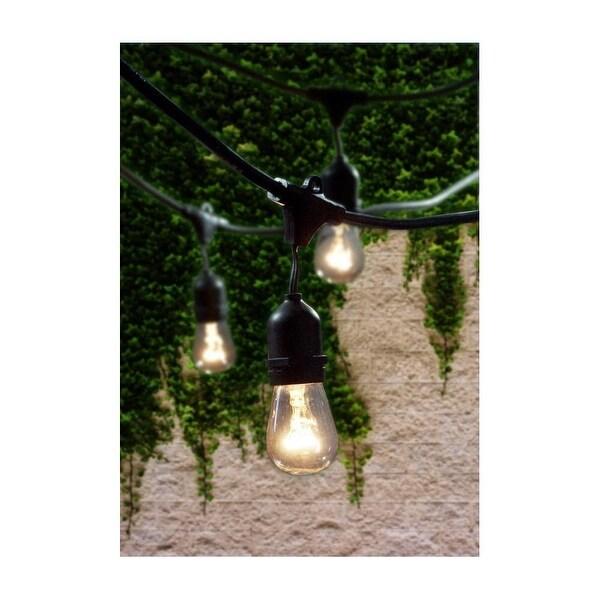 Bulbrite 810002 48 Foot 15 Light Socket String Light - CLEAR - N/A