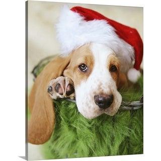 """Basset Hound wearing a Santa hat"" Canvas Wall Art"