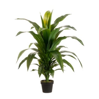 """Set of 2 Potted Artificial Tropical Green Dracaena Fragans Plants 42"""" - N/A"""