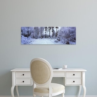 Easy Art Prints Panoramic Images's 'Trees in a snow covered forest, Schwarzwalder Hochwald, Germany' Premium Canvas Art