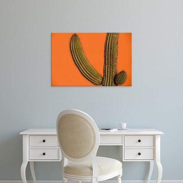 Easy Art Prints Walter Bibikow's 'Colorful Cactus Details' Premium Canvas Art