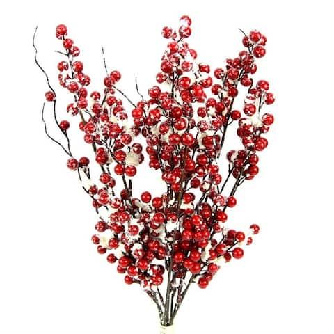 Winter Frost Berry Bush