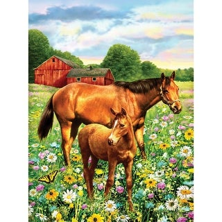 "Junior Small Paint By Number Kit 8.75""X11.75""-Horse In Field"