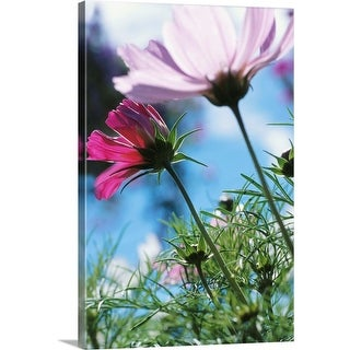 """""""Flowers in a field"""" Canvas Wall Art"""