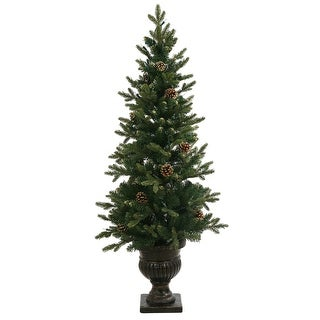 """4' x 20"""" Gold Pine Crest Potted 222T"""