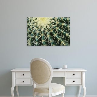 Easy Art Prints Brent Bergherm's 'Spine Pattern Detail Of Golden Barrel' Premium Canvas Art