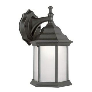 Trans Globe Lighting PL-4349 Templar 1 Light Fluorescent Lantern Outdoor Wall Sconce