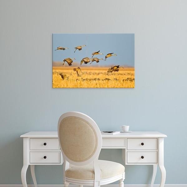 Easy Art Prints Chuck Haney's 'Sandhill Cranes Land In Corn Fields' Premium Canvas Art